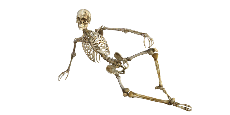 How to Keep Healthy Bones and Muscle with Age
